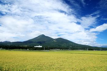 稲穂と磐梯山