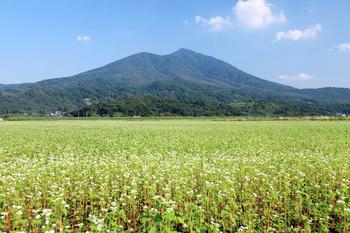 筑波山とソバ畑